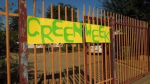 Combretum Green Week